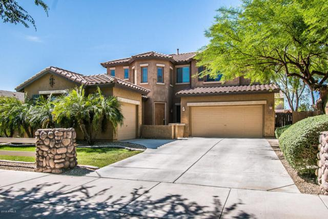 3843 E Old Stone Circle N, Chandler, AZ 85249 (MLS #5756864) :: Essential Properties, Inc.