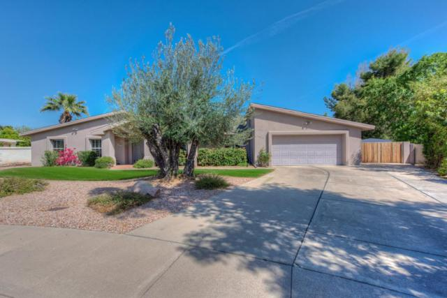 8925 N 80TH Place, Scottsdale, AZ 85258 (MLS #5756869) :: Essential Properties, Inc.