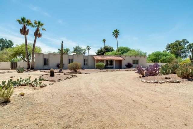 8555 E Kalil Drive, Scottsdale, AZ 85260 (MLS #5756877) :: Occasio Realty