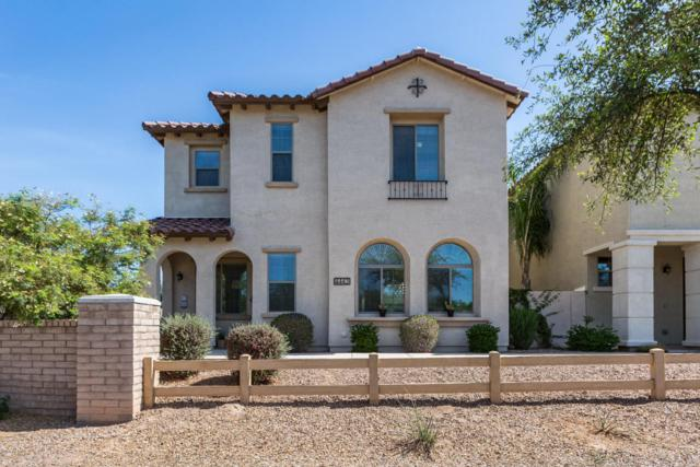 4443 E Remington Drive, Gilbert, AZ 85297 (MLS #5756881) :: Occasio Realty