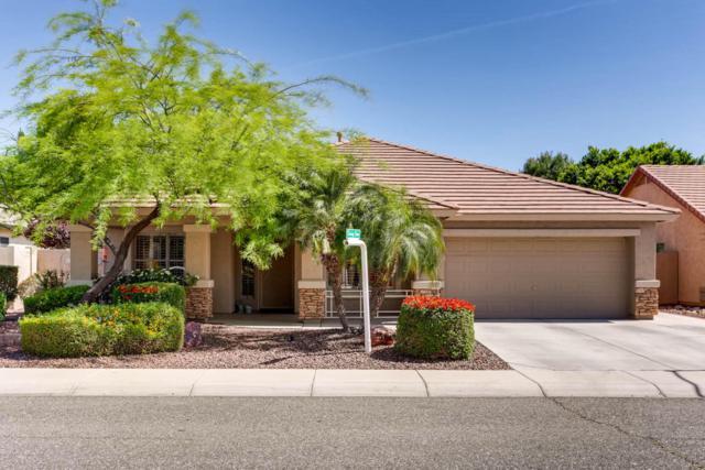 6391 W Taro Lane, Glendale, AZ 85308 (MLS #5756907) :: The Laughton Team