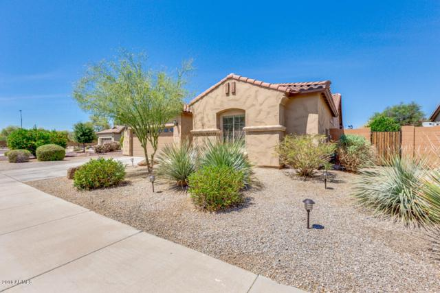 16778 W Sonora Street, Goodyear, AZ 85338 (MLS #5756927) :: Kortright Group - West USA Realty