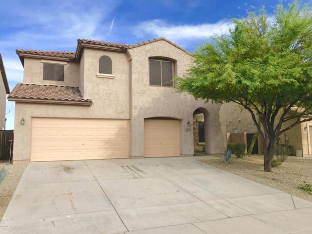 3407 N 301ST Drive, Buckeye, AZ 85396 (MLS #5756947) :: Desert Home Premier