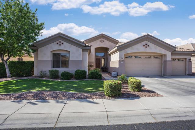 12727 W Cercado Lane, Litchfield Park, AZ 85340 (MLS #5756970) :: Group 46:10
