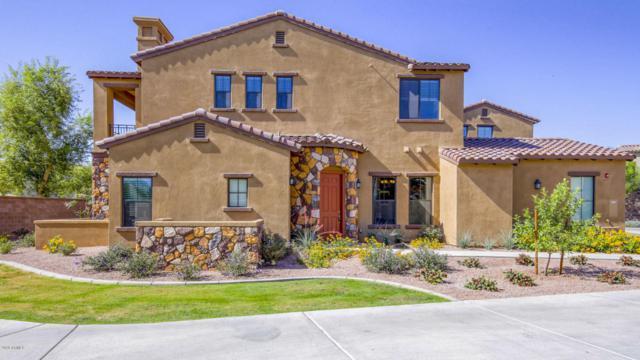 4777 S Fulton Ranch Boulevard #1069, Chandler, AZ 85248 (MLS #5756977) :: Riddle Realty