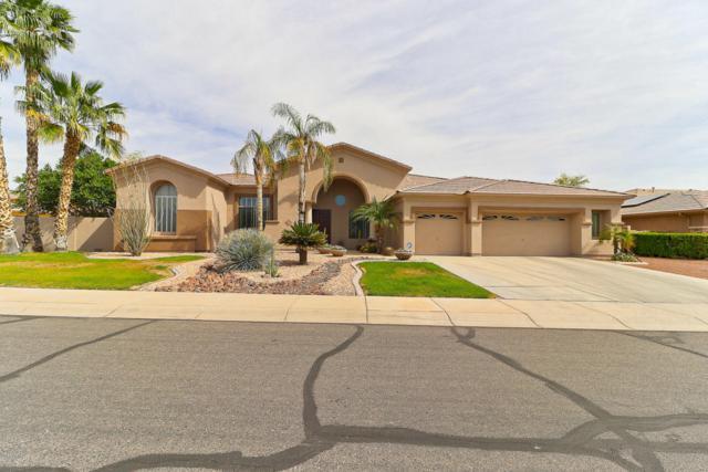 13118 W Peck Court, Litchfield Park, AZ 85340 (MLS #5756982) :: The W Group