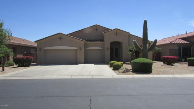 9779 W Bent Tree Drive, Peoria, AZ 85383 (MLS #5756997) :: The Laughton Team