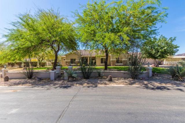 10081 W Prospector Drive, Queen Creek, AZ 85142 (MLS #5757020) :: Yost Realty Group at RE/MAX Casa Grande