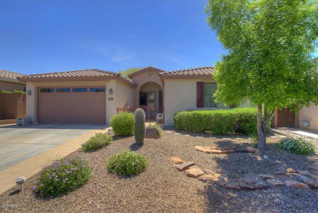 3449 W Twain Court, Anthem, AZ 85086 (MLS #5757051) :: Desert Home Premier