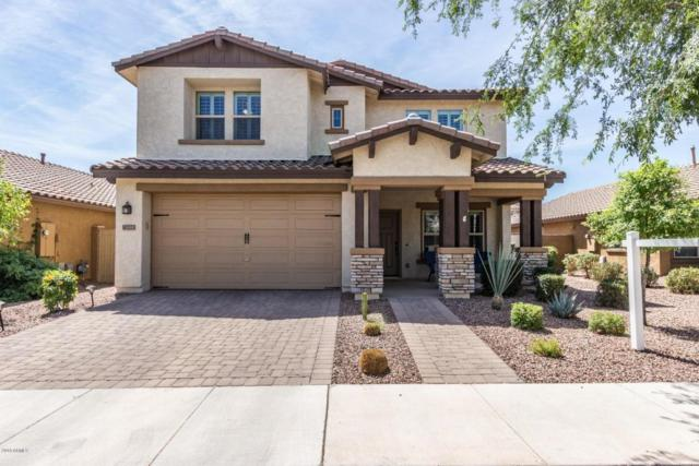 10223 E Starion Avenue, Mesa, AZ 85212 (MLS #5757055) :: The Everest Team at My Home Group