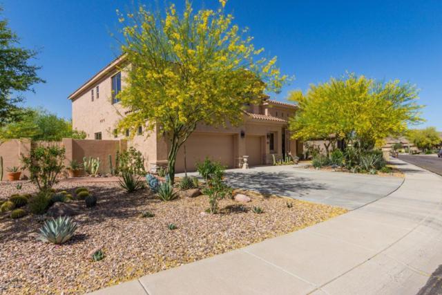 7453 E Cliff Rose Trail, Gold Canyon, AZ 85118 (MLS #5757072) :: Yost Realty Group at RE/MAX Casa Grande