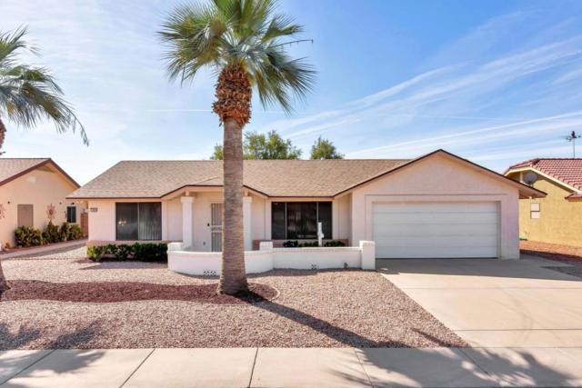 13835 W Pinetree Drive, Sun City West, AZ 85375 (MLS #5757080) :: Desert Home Premier