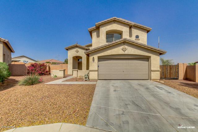 6467 S 255th Drive, Buckeye, AZ 85326 (MLS #5757103) :: Desert Home Premier