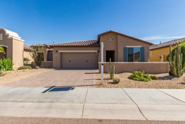 17591 W Cedarwood Lane, Goodyear, AZ 85338 (MLS #5757112) :: Desert Home Premier