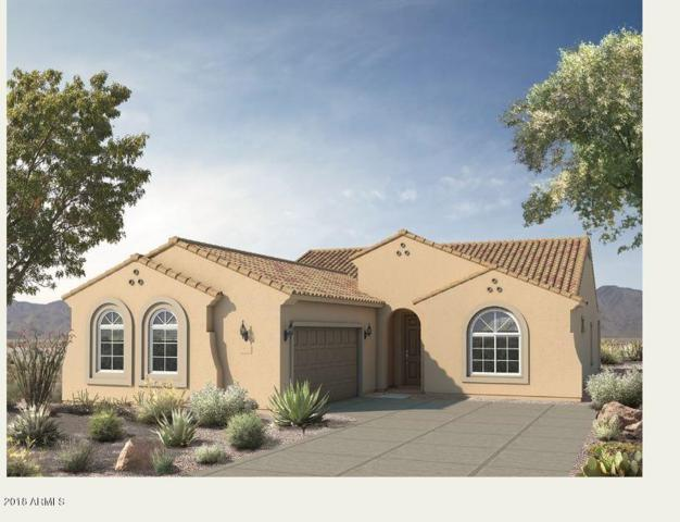 25991 W Tonto Lane, Buckeye, AZ 85396 (MLS #5757152) :: My Home Group