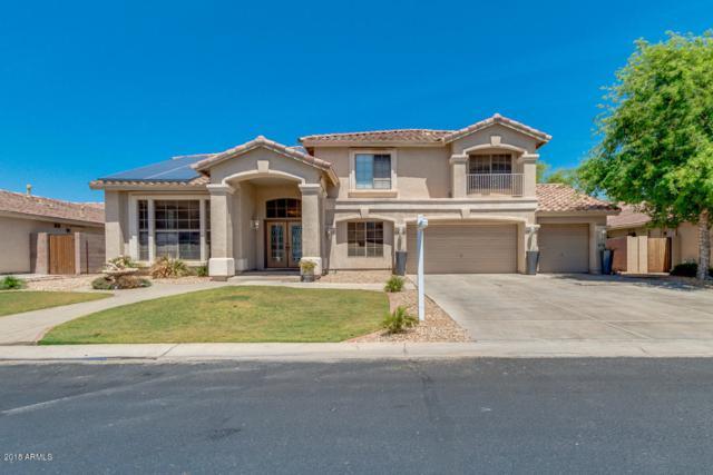 13606 W Windsor Boulevard, Litchfield Park, AZ 85340 (MLS #5757228) :: Group 46:10