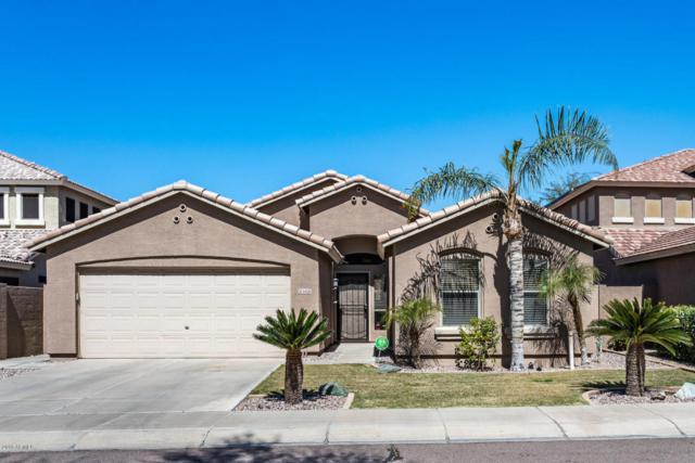 6420 W Villa Linda Drive, Glendale, AZ 85310 (MLS #5757230) :: Group 46:10