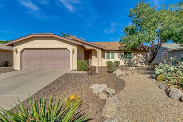 6908 E Paradise Lane, Scottsdale, AZ 85254 (MLS #5757245) :: Group 46:10