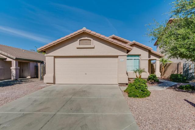 1564 S 229TH Avenue, Buckeye, AZ 85326 (MLS #5757268) :: Desert Home Premier