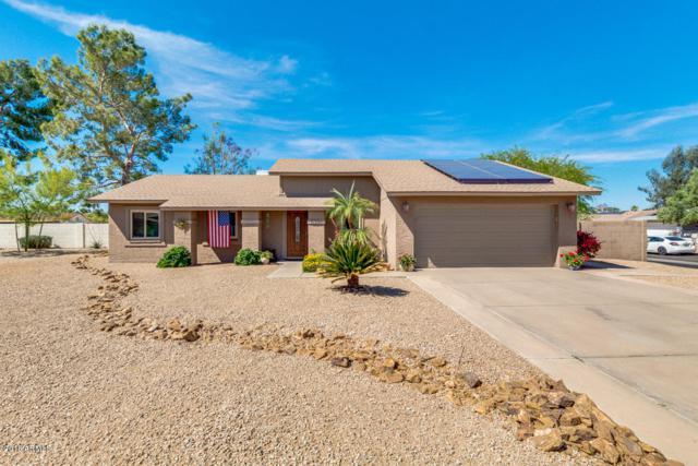5301 E Blanche Drive, Scottsdale, AZ 85254 (MLS #5757271) :: Group 46:10