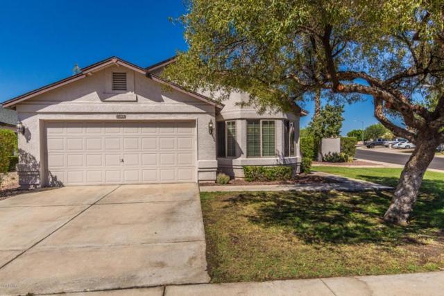 15305 N 85TH Drive, Peoria, AZ 85381 (MLS #5757284) :: Desert Home Premier