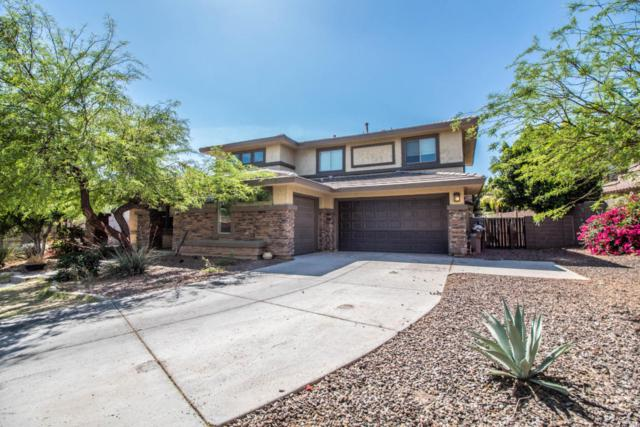 30252 N 124TH Lane, Peoria, AZ 85383 (MLS #5757297) :: Desert Home Premier