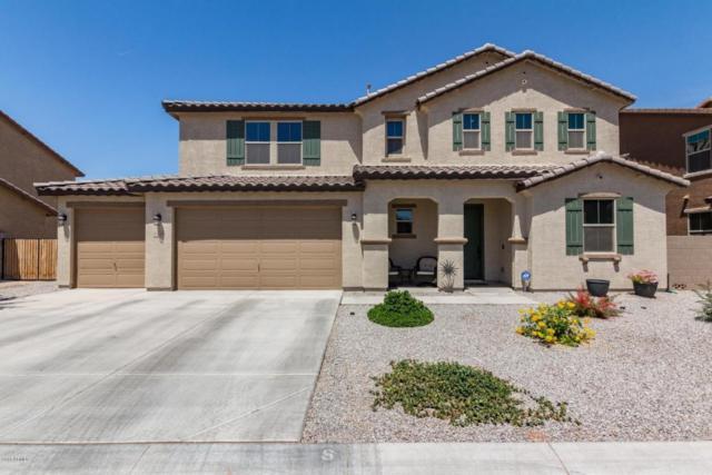 40520 W Marion May Lane, Maricopa, AZ 85138 (MLS #5757304) :: Group 46:10