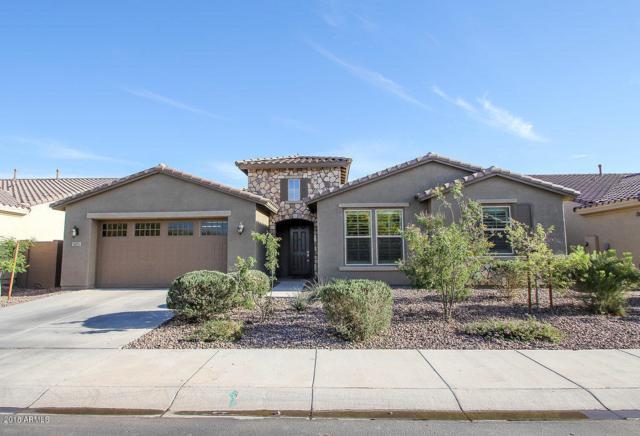 3671 E Narrowleaf Drive, Gilbert, AZ 85298 (MLS #5757311) :: Group 46:10