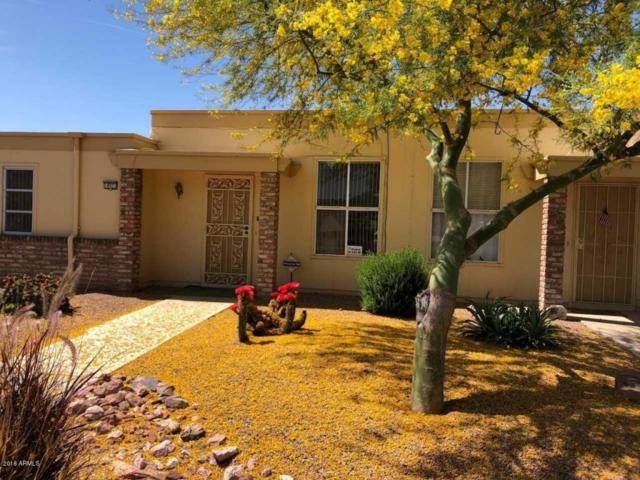 10021 W Forrester Drive, Sun City, AZ 85351 (MLS #5757317) :: Brett Tanner Home Selling Team