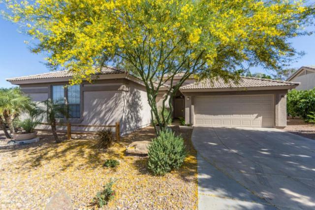 16103 W Ironwood Street, Surprise, AZ 85374 (MLS #5757324) :: Desert Home Premier