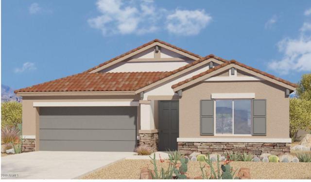 26017 N 134TH Drive, Peoria, AZ 85383 (MLS #5757329) :: Desert Home Premier