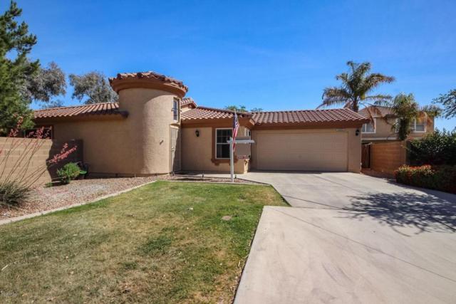15822 N 172ND Lane, Surprise, AZ 85388 (MLS #5757352) :: Desert Home Premier