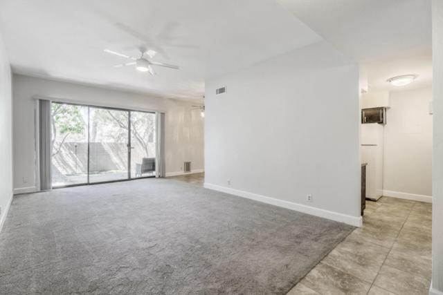 1201 E Northshore Drive #127, Tempe, AZ 85283 (MLS #5757380) :: Brett Tanner Home Selling Team