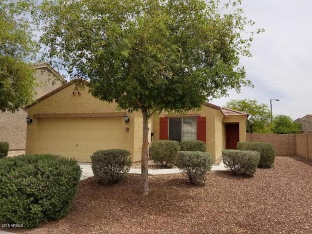 5709 S 237TH Drive, Buckeye, AZ 85326 (MLS #5757411) :: Desert Home Premier