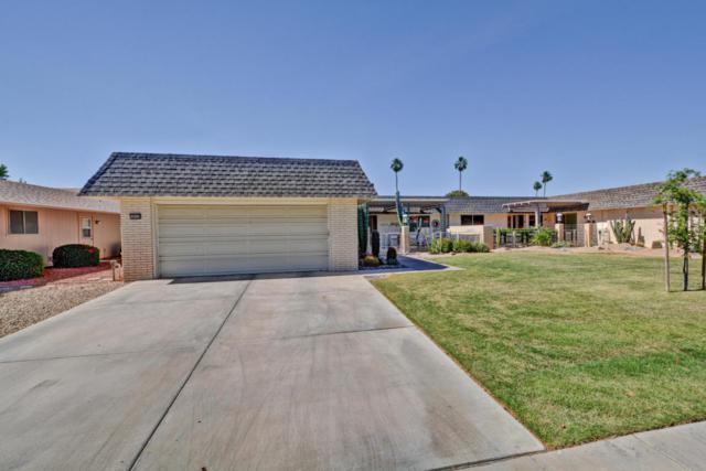 10310 W Highwood Lane, Sun City, AZ 85373 (MLS #5757453) :: Desert Home Premier
