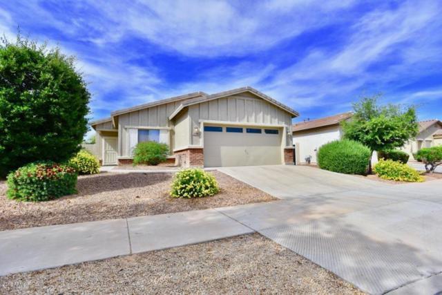 13796 W Mauna Loa Lane, Surprise, AZ 85379 (MLS #5757457) :: Desert Home Premier
