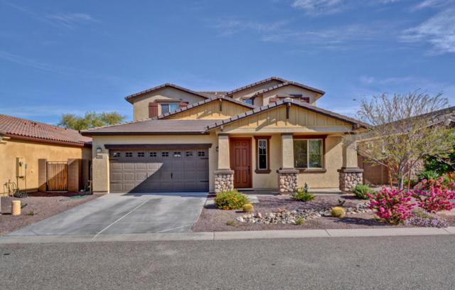 7552 W Molly Drive, Peoria, AZ 85383 (MLS #5757469) :: Desert Home Premier