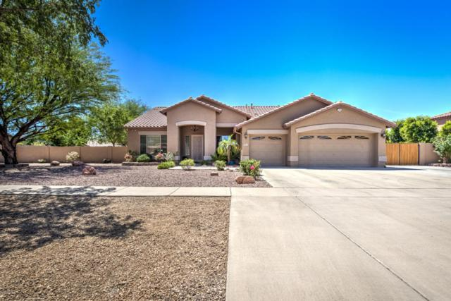 6843 W Grovers Avenue, Glendale, AZ 85308 (MLS #5757471) :: Desert Home Premier
