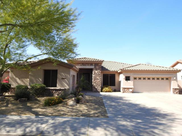 14650 W Roanoke Avenue, Goodyear, AZ 85395 (MLS #5757477) :: Desert Home Premier