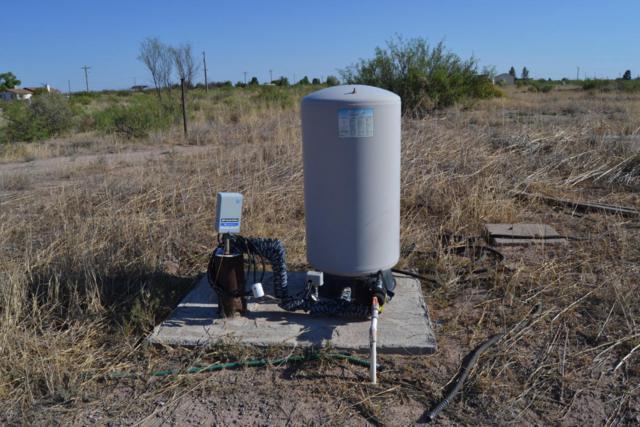 Tbd 26 Ac Mcbride Road, McNeal, AZ 85617 (MLS #5757562) :: RE/MAX Excalibur