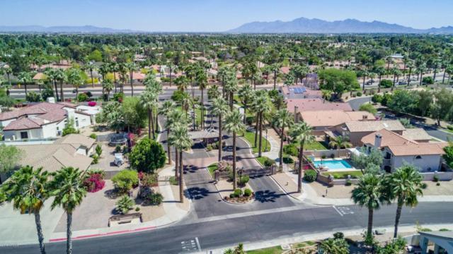 4635 N Clear Creek Drive, Litchfield Park, AZ 85340 (MLS #5757566) :: RE/MAX Excalibur