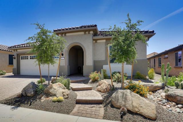 26873 W Piute Avenue, Buckeye, AZ 85396 (MLS #5757577) :: RE/MAX Excalibur