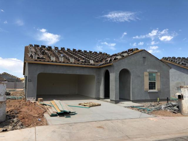 36990 W Nola Way, Maricopa, AZ 85138 (MLS #5757586) :: The Everest Team at My Home Group