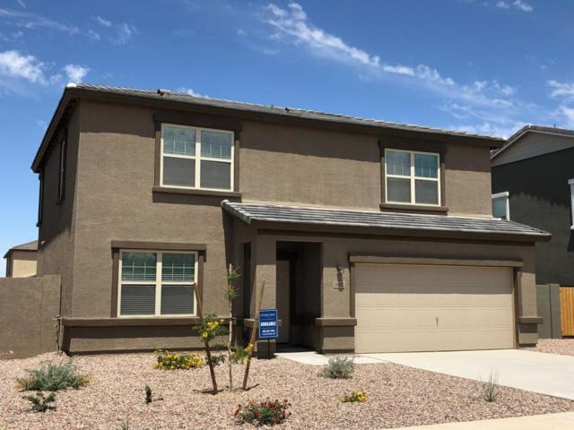 36882 W Nola Way, Maricopa, AZ 85138 (MLS #5757596) :: The Everest Team at My Home Group