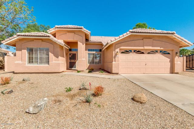 780 S Diane Court, Chandler, AZ 85226 (MLS #5757626) :: Kepple Real Estate Group
