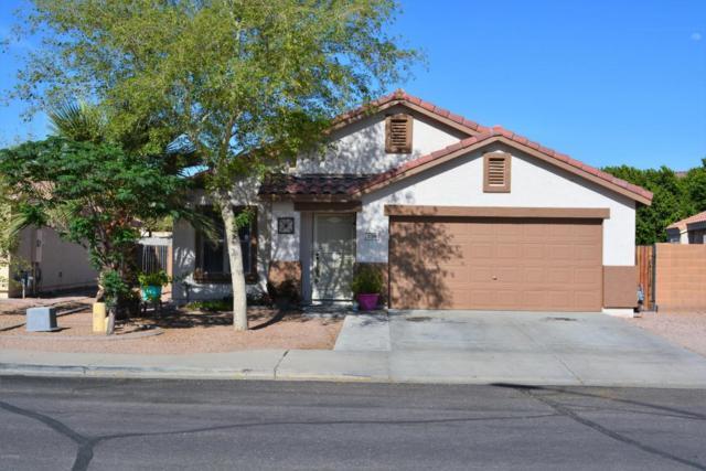 1139 S 111TH Circle, Mesa, AZ 85208 (MLS #5757837) :: Essential Properties, Inc.