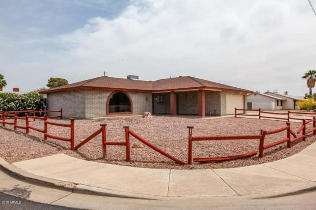 1725 S San Marcos Drive, Apache Junction, AZ 85120 (MLS #5757913) :: Yost Realty Group at RE/MAX Casa Grande