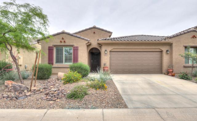 4779 W Posse Drive, Eloy, AZ 85131 (MLS #5757996) :: Yost Realty Group at RE/MAX Casa Grande