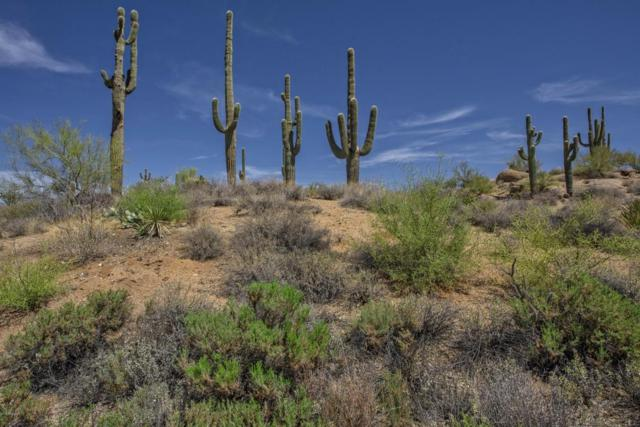 11100 E Cinder Cone Trail, Scottsdale, AZ 85262 (MLS #5758212) :: Brett Tanner Home Selling Team