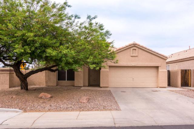 6480 W Megan Court, Chandler, AZ 85226 (MLS #5758296) :: The Jesse Herfel Real Estate Group